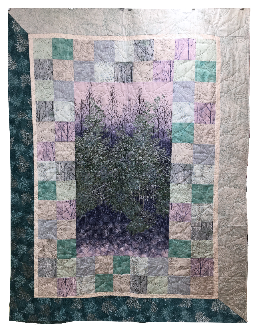 Quilt Kit: Charmed Panel Quilt Kit featuring A Walk on The Path fabrics