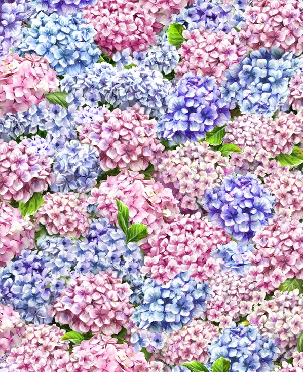 Timeless Treasures: Peaceful Garden DONA C8002 MULTI Packed Hydrangeas Digital Fabric
