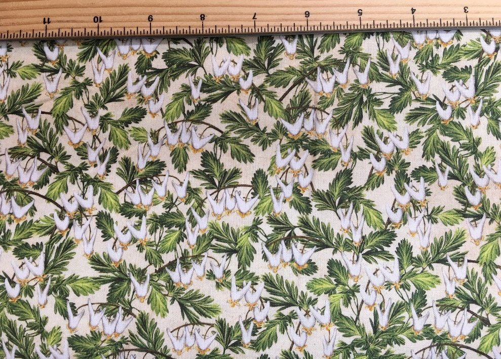 Robert Kaufman | Wildflowers of Maine - Maine Shop Hop Fabric: DUTCHMAN'S BREECHES - AVAILABLE NOW