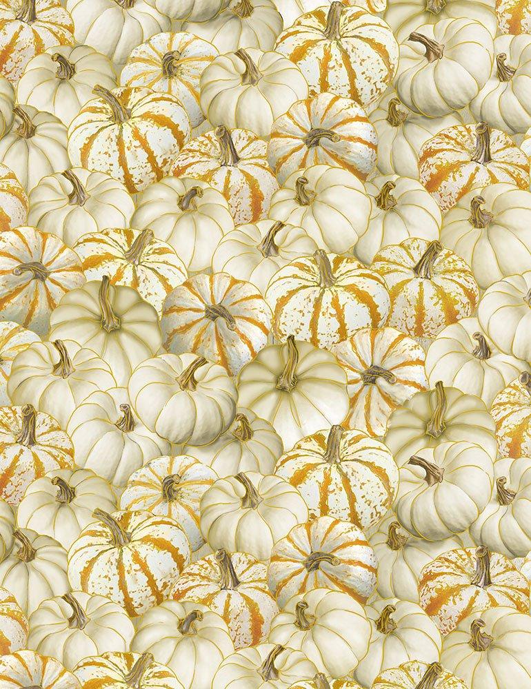 Timeless Treasures Harvest CM6392 Cream White Pumpkin