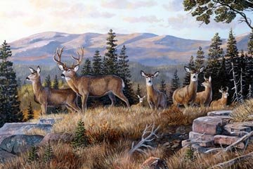 Northcott Naturescapes High Ridge Crossing DP21933 34 Deer Digital Panel