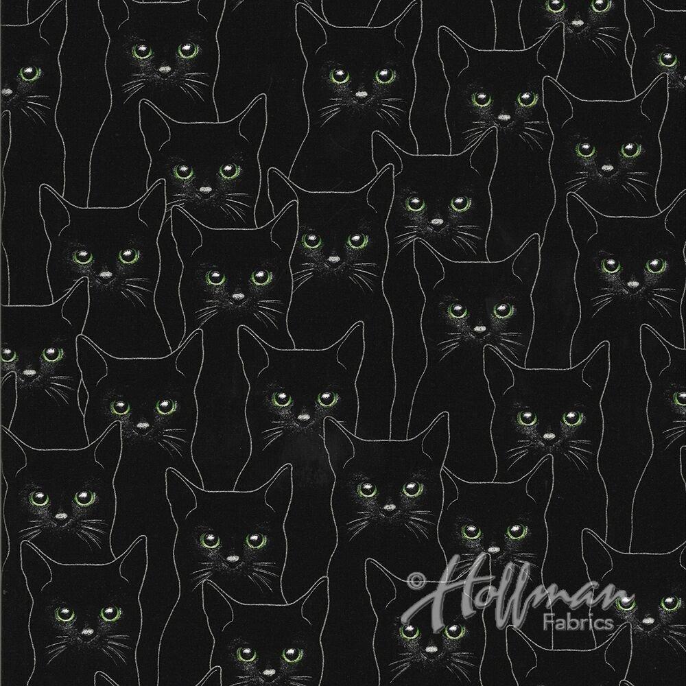 Hoffman Full Moon Onyx/Silver Cat P4347-213S