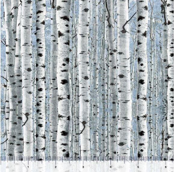 Timberland Trail by Dan Morris - Birch Trees 26808-B