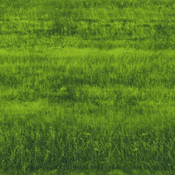 RJR Dan Morris Danscapes - Green Grass 2411-2
