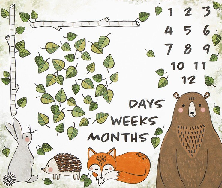 Baby Growth Milestone Mat - Robert Kaufman OH HOW THEY GROW 36in Panel SRKD 18948 1 Woodland Animals