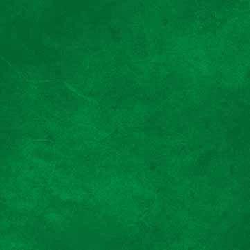 P&B Suede SUEB 300 G Green