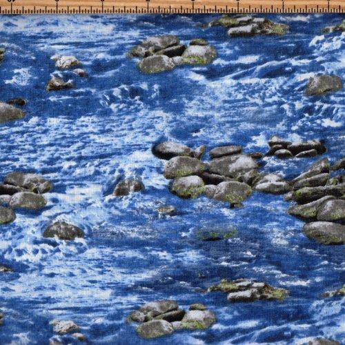 Timeless Treasures Nature C4953 Water