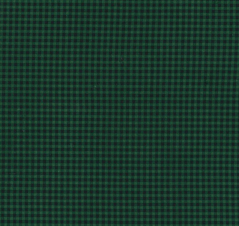 Timeless Treasures Check C7065 - Green Mini Check