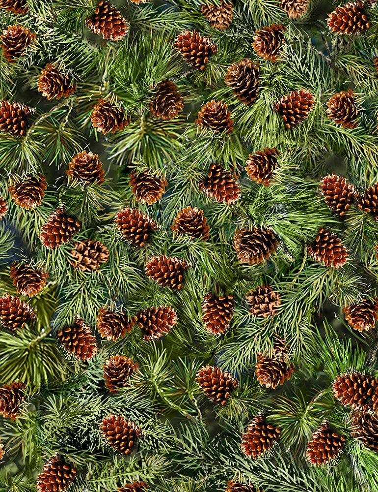 Timeless Treasures DONA C6736 Pine Cones
