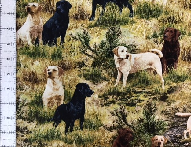 Timeless Treasures Deep In The Woods C6685-Grass - Hunting Labrador Dogs