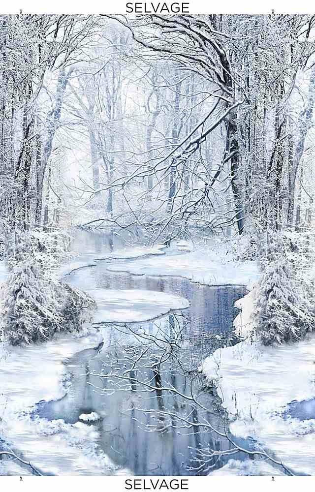 Timeless Treasures PANEL C7846 Blue Winter Hike Wonderland