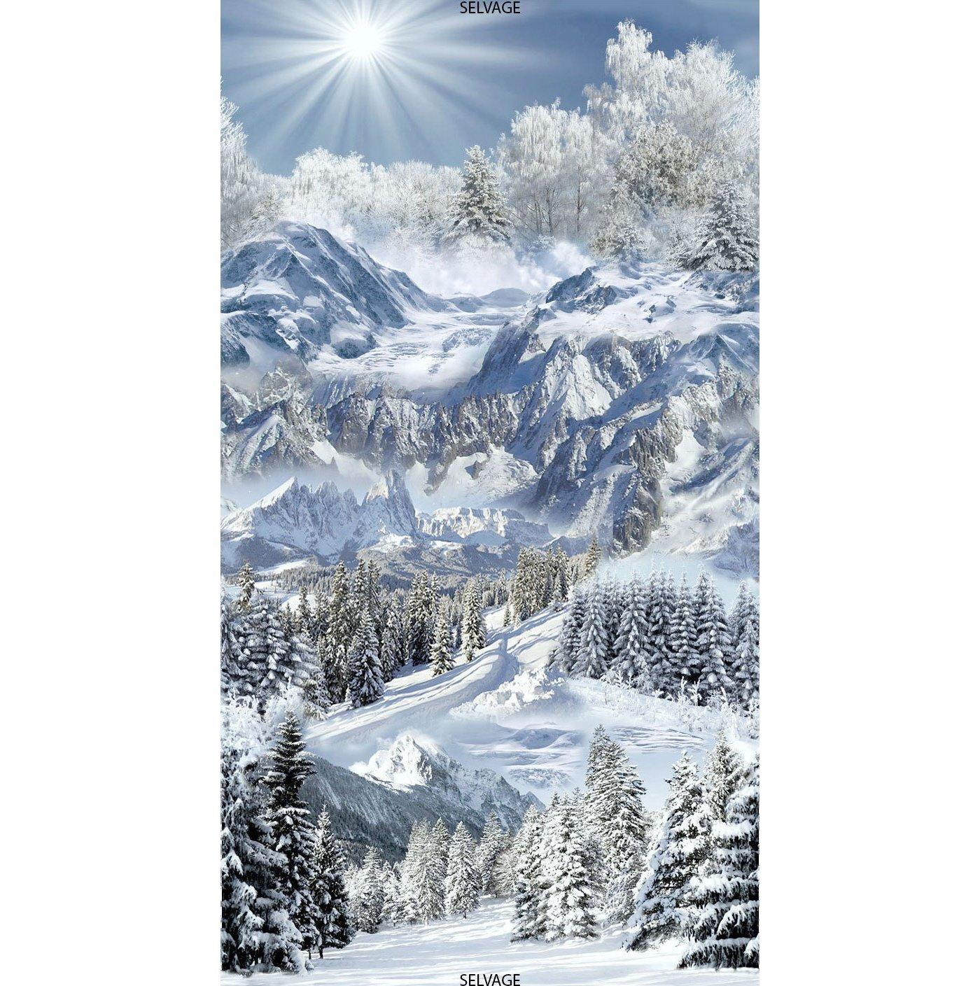 Timeless Treasures - Snowscape | PANEL Winter C6127 Snow Mountain