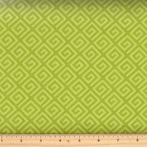 Windham Fabrics 108' Quilt back 39511-3