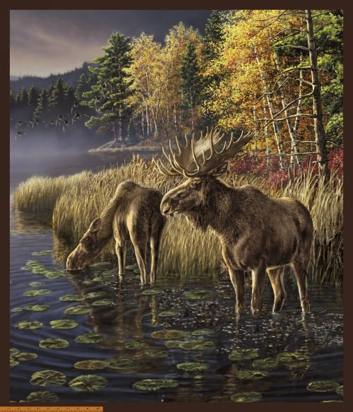 Windham - One of a Kind- Moose Lake PANEL