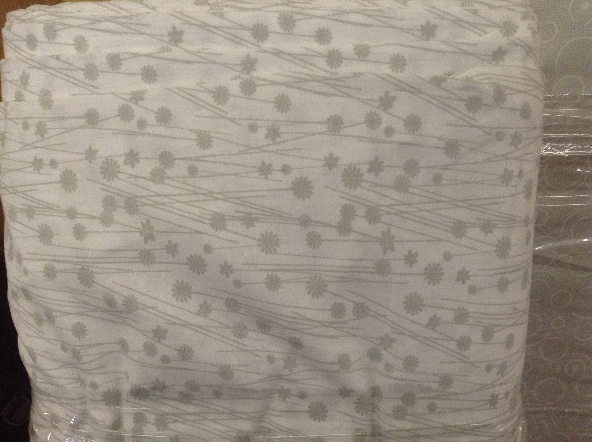 Dandelions- Gray & White