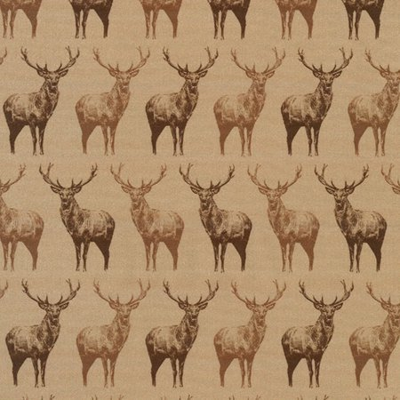 Animal Kingdom - Natural