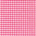 FF 1/16 Gingham Raspberry