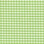 Fabric Finders 1/16 Gingham Sprout