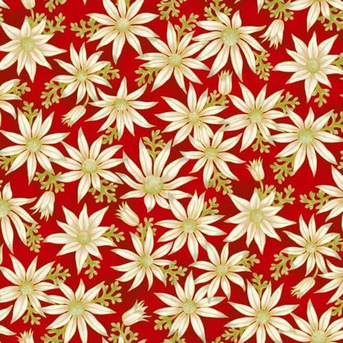 UNDER THE AUSTRALIAN SUN  flannel flowers red 15-1