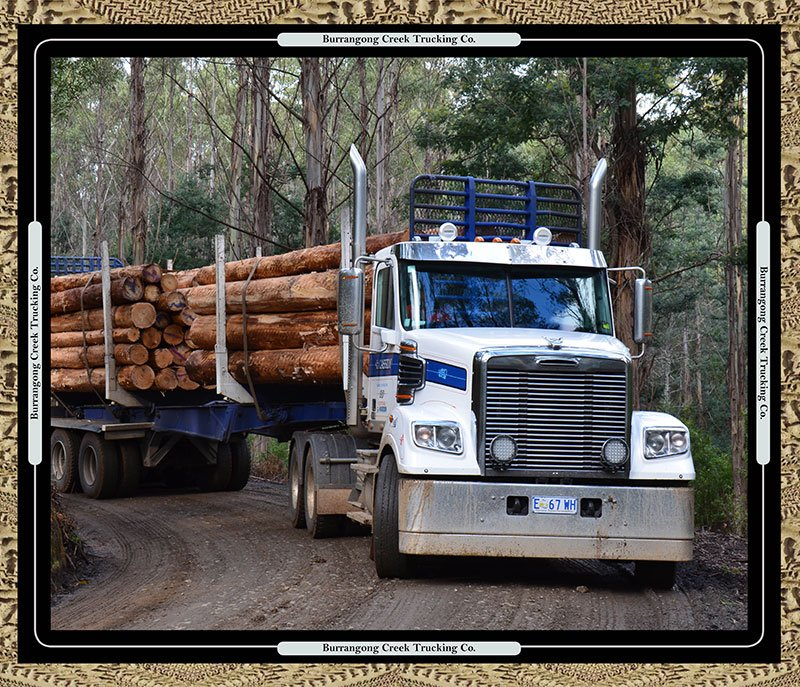 Burrangong Creek Log Truck