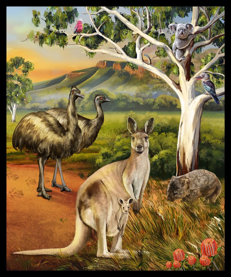 Wildlife Valley panel