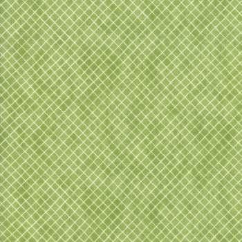 Geometry Buckminster Graph SKU# 1495 20