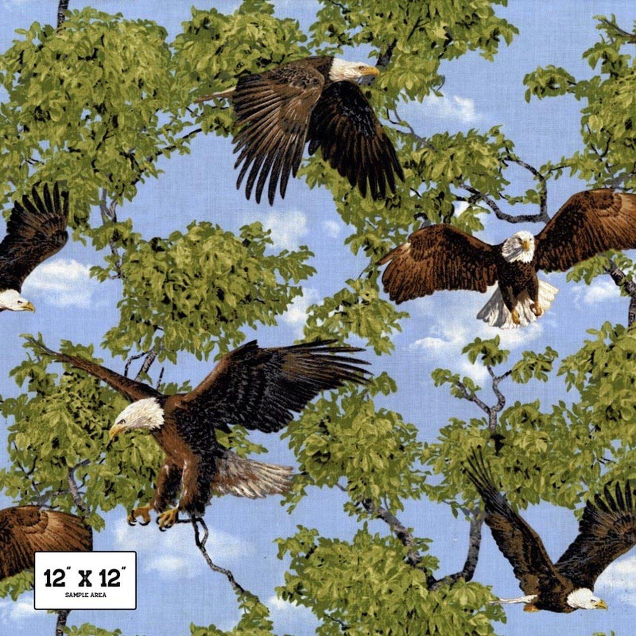 Soaring eagles on blue sky