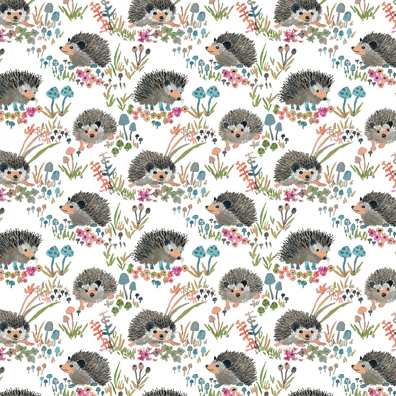 Fox wood hedgehogs on white