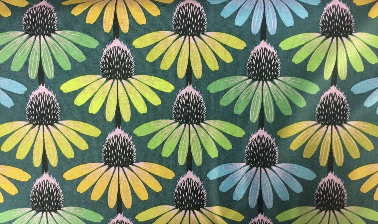Floral Retrospective 149  Echinacea Algae
