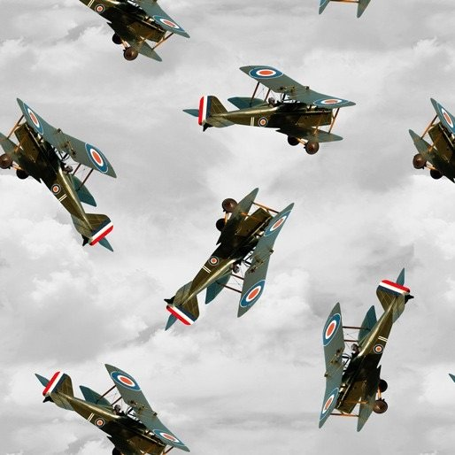 Air Force Centenary Tiger Moth aircraft cloudy