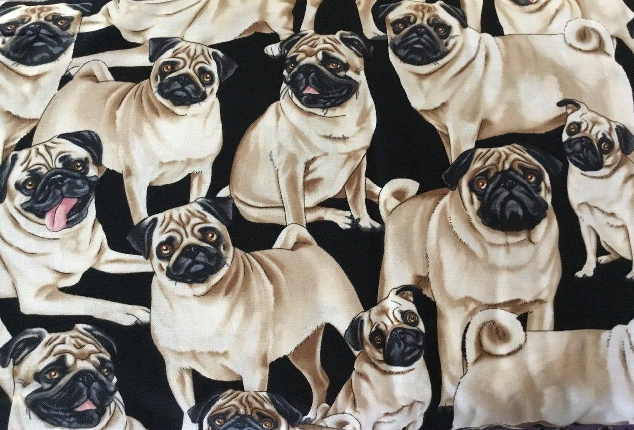 Pugs on black