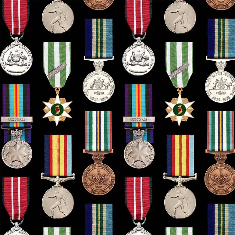 Remembering Vietnam campaign and service medals