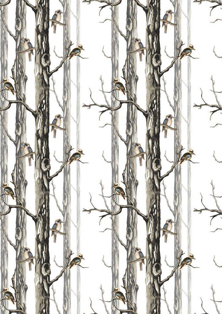 Bush beauties kookaburras