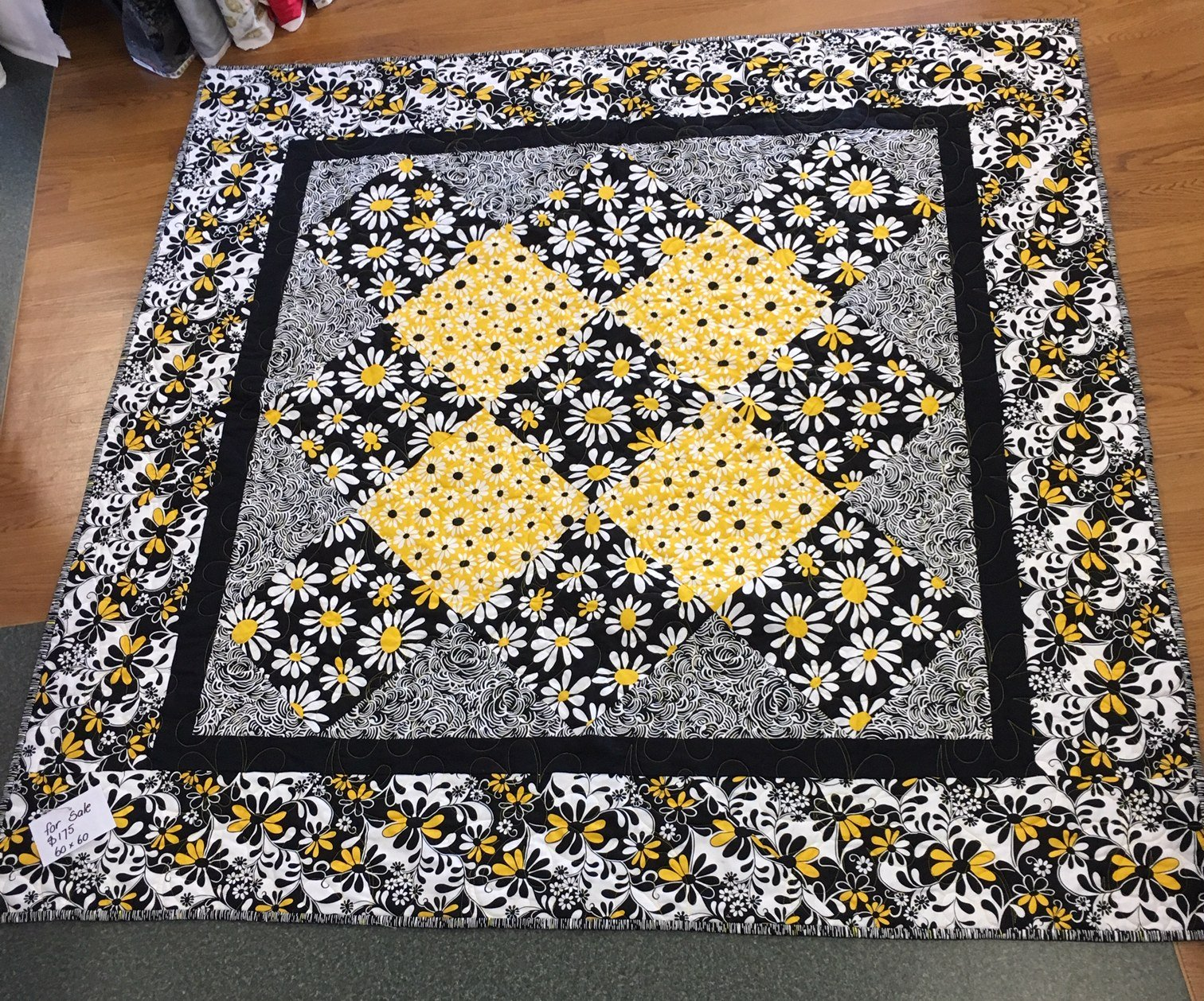 Black and yellow daisies