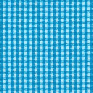 FF Gingham - Turquoise 1/16