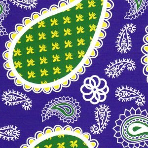 FF Print - Paisley Purple/Green