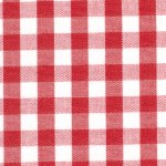FF Gingham - Berry 1/4
