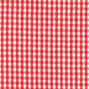 FF Gingham - Berry 1/16