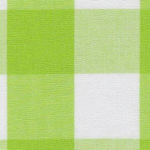 FF Gingham - Bright Lime 1 Check