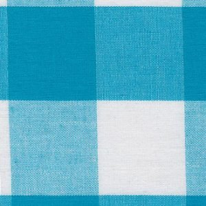 FF Gingham - Turquoise 1 Check