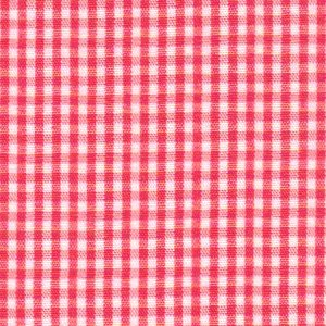 FF Gingham - Watermelon 1/16