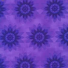 1204212 Calypso Floral Starburst