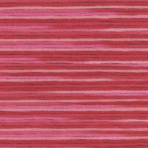 #5002 Cosmo Seasons Variegated Embroidery Floss