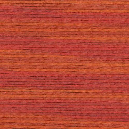 #5007 Cosmo Seasons Variegated Embroidery Floss