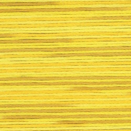 #5009 Cosmo Seasons Variegated Embroidery Floss