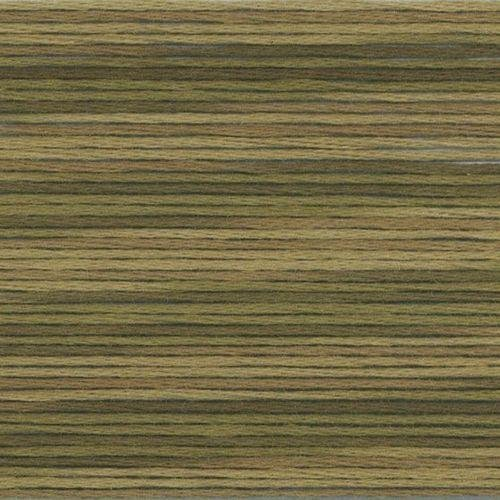 #5012 Cosmo Seasons Variegated Embroidery Floss