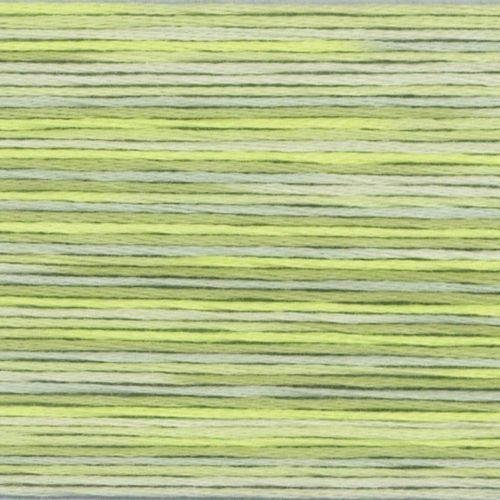 #5013 Cosmo Seasons Variegated Embroidery Floss