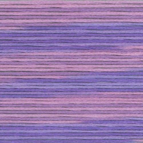 #5024 Cosmo Seasons Variegated Embroidery Floss