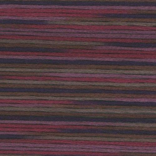 #5027 Cosmo Seasons Variegated Embroidery Floss