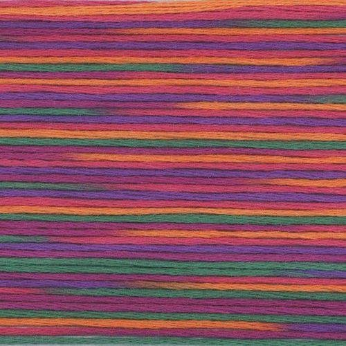 #5038 Cosmo Seasons Variegated Embroidery Floss